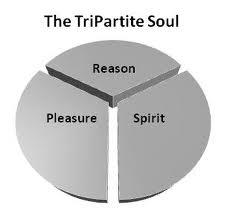 Tripartite Soul