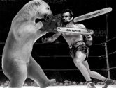 abe_lincoln_vs__a_polar_bear_by_transistor86-d4q8sbx