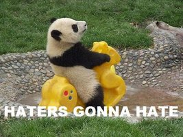 haters-gonna-hate-panda-meme